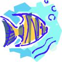 marine_biology_97687_tns